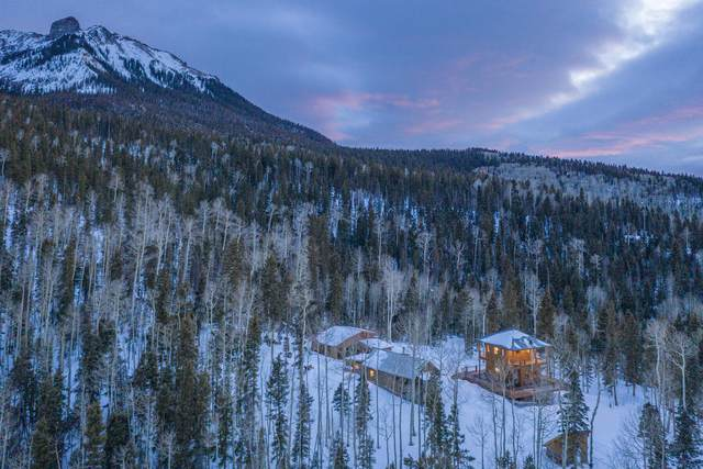 66 Wildwood Lane, Placerville, CO 81430 (MLS #39118) :: Telluride Properties