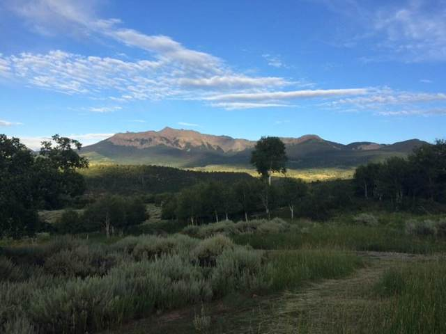 807 Harcourt Trail, Placerville, CO 81430 (MLS #39120) :: Telluride Properties
