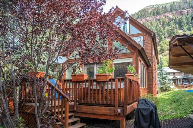 580 W Galena Street, Telluride, CO 81435 (MLS #39125) :: Compass