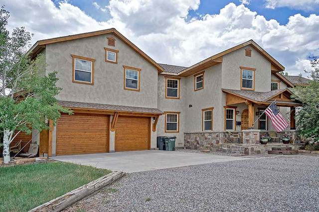 604 Sabeta Drive, Ridgway, CO 81432 (MLS #39184) :: Compass