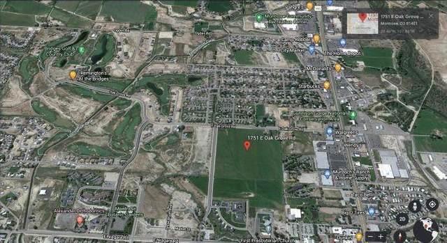 1751 E Oak Grove Road, Montrose, CO 81401 (MLS #39211) :: Telluride Standard