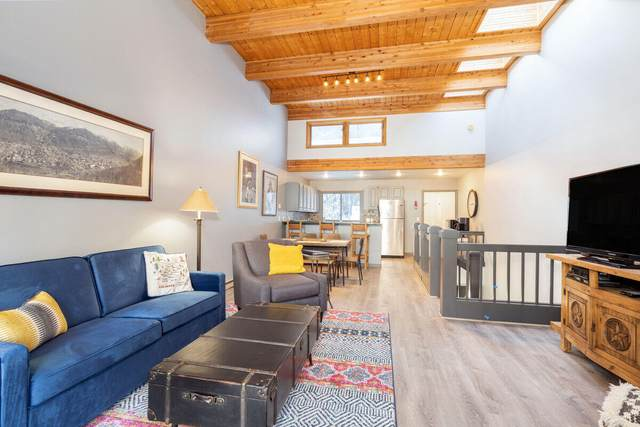 460 S Pine Street A203, Telluride, CO 81435 (MLS #39223) :: Telluride Real Estate Corp.