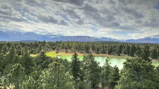 TBD Badger Trail #555, Ridgway, CO 81432 (MLS #39276) :: Compass