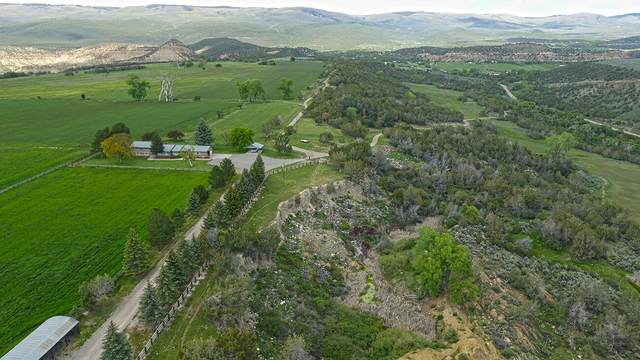 17763 Ward Creek Road, Out Of Area, CO 81413 (MLS #39283) :: Compass