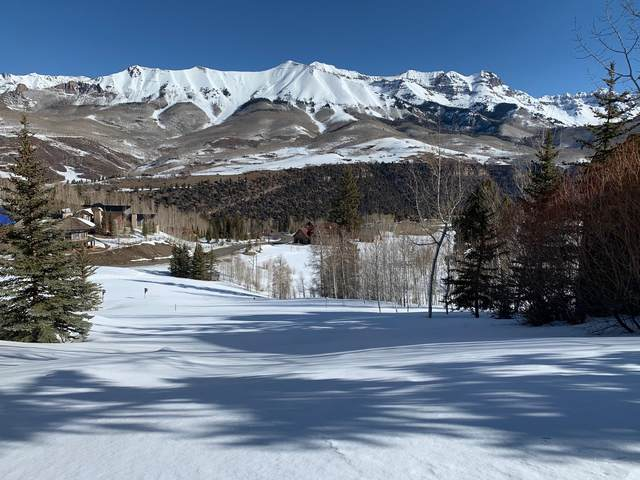 308 Fairway Drive #33, Mountain Village, CO 81435 (MLS #39286) :: Telluride Properties