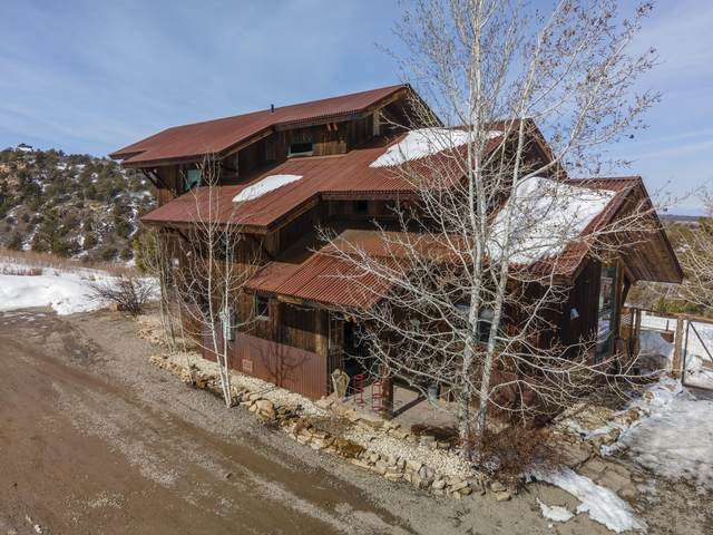 423 Beaver Pines Road, Norwood, CO 81423 (MLS #39293) :: Compass