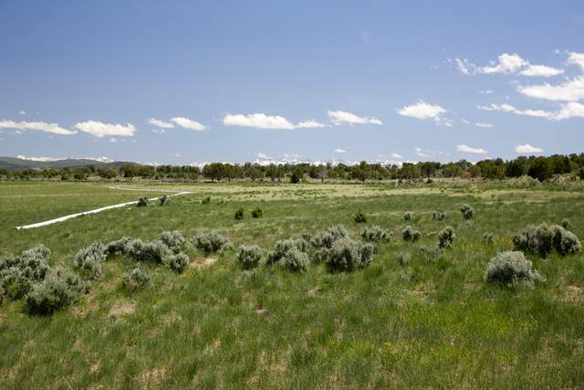 tbd Bostwick Park Road, Montrose, CO 81401 (MLS #39311) :: Compass