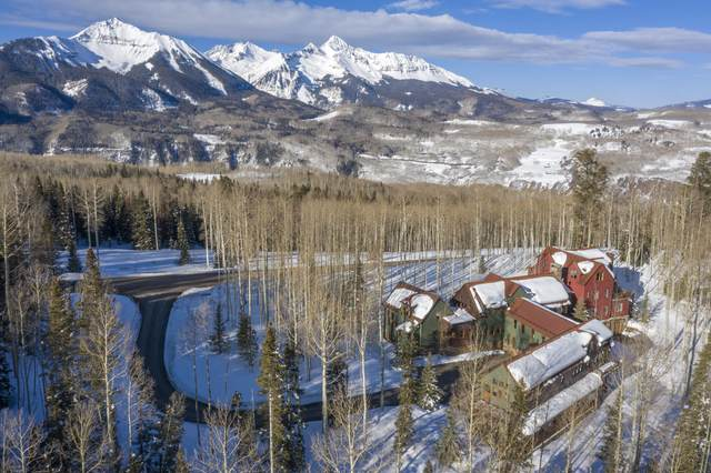 225 Raspberry Patch Road, Telluride, CO 81435 (MLS #39312) :: Compass