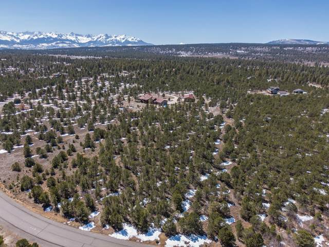 204 Fisher Canyon Drive Lot 30, Ridgway, CO 81432 (MLS #39341) :: Telluride Real Estate Corp.