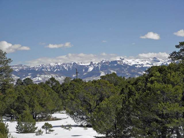 TBD Fisher Canyon Drive #16, Ridgway, CO 81432 (MLS #39351) :: Telluride Real Estate Corp.