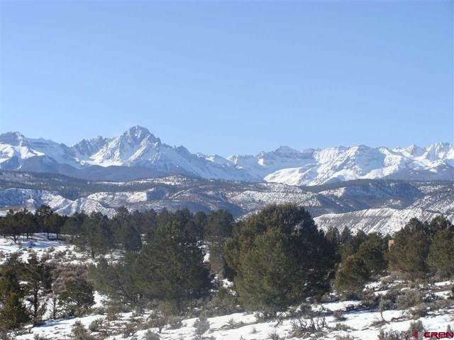 TBD County Road 5 Drive, Ridgway, CO 81432 (MLS #39382) :: Compass
