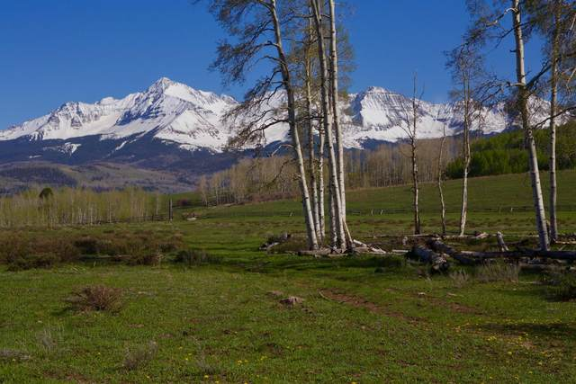 TBD Blunt Road, Placerville, CO 81430 (MLS #39486) :: Telluride Real Estate Corp.