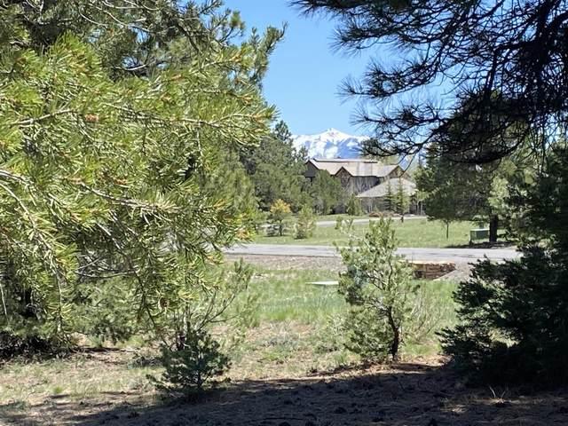 1148 Marmot Drive #222, Ridgway, CO 81432 (MLS #39491) :: Compass