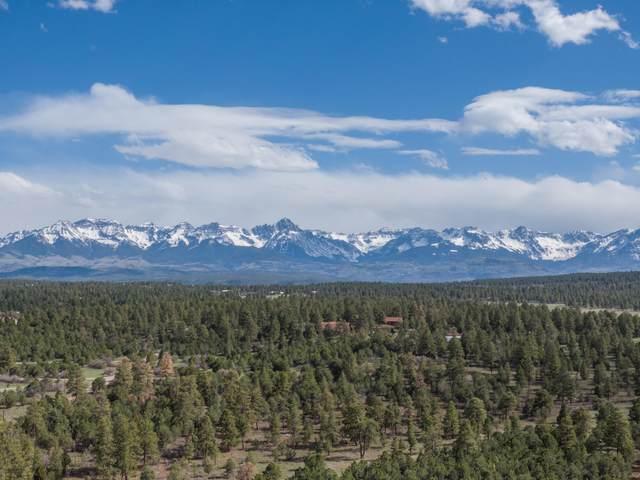 193 Fisher Canyon Drive Lot 15, Ridgway, CO 81432 (MLS #39492) :: Telluride Properties