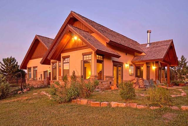 7691 Highway 62, Ridgway, CO 81432 (MLS #39523) :: Telluride Properties