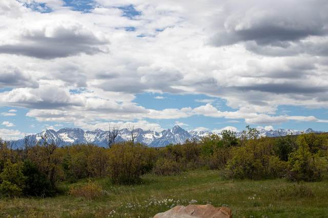 TBD Government Springs Road, Montrose, CO 81403 (MLS #39562) :: Compass