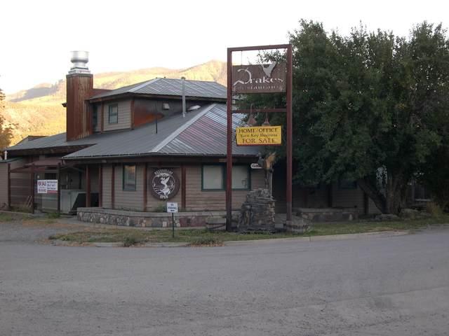 220 S Lena Street, Ridgway, CO 81432 (MLS #39579) :: Telluride Properties