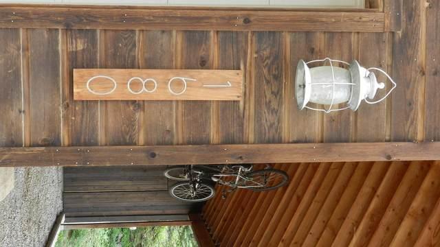 1680 Hinkson Terrace, Ouray, CO 81427 (MLS #39580) :: Telluride Properties