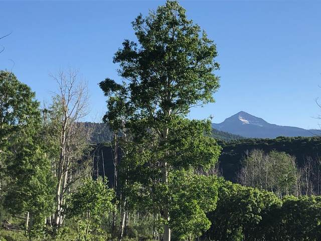 TBD County Road M44 B, Placerville, CO 81430 (MLS #39586) :: Compass