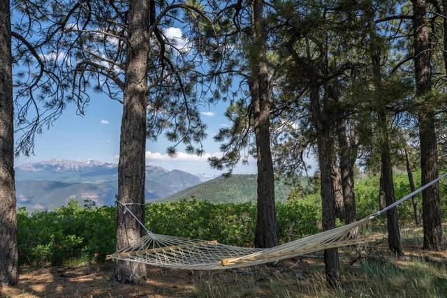 TBD Canyon Rim Loop Lot 6, Placerville, CO 81430 (MLS #39613) :: Compass