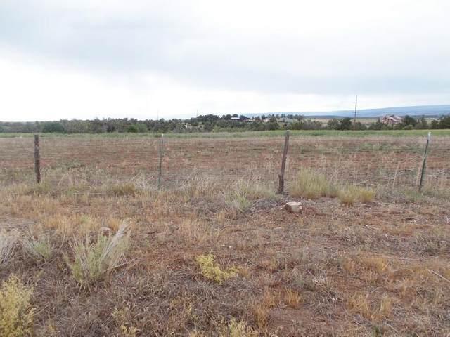 tbd County Road W35 Road #11, Norwood, CO 81423 (MLS #39662) :: Telluride Standard