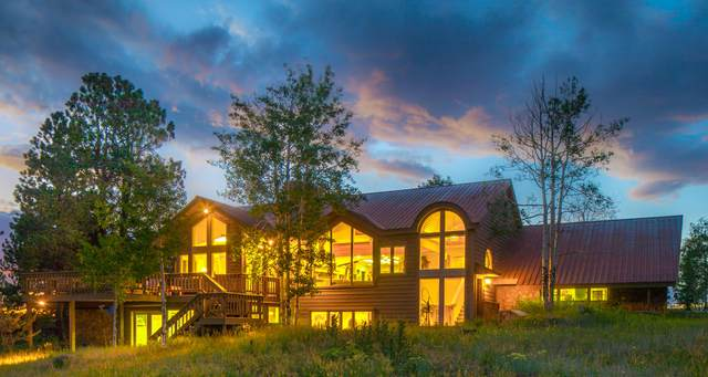 1039 W Anderson Road, Placerville, CO 81430 (MLS #39669) :: Compass
