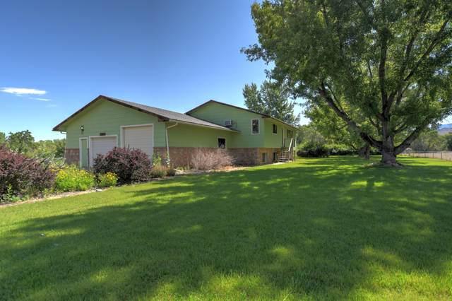 68200 Tumbleweed Road, Montrose, CO 81403 (MLS #39725) :: Telluride Real Estate Corp.