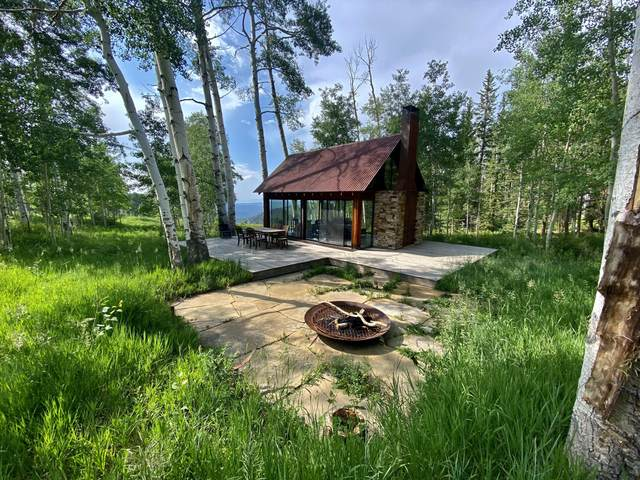 305 Katrina Springs Trail, Placerville, CO 81430 (MLS #39752) :: Compass