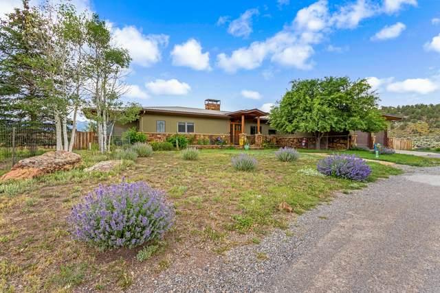 499 Meadows Circle, Ridgway, CO 81432 (MLS #39760) :: Telluride Properties
