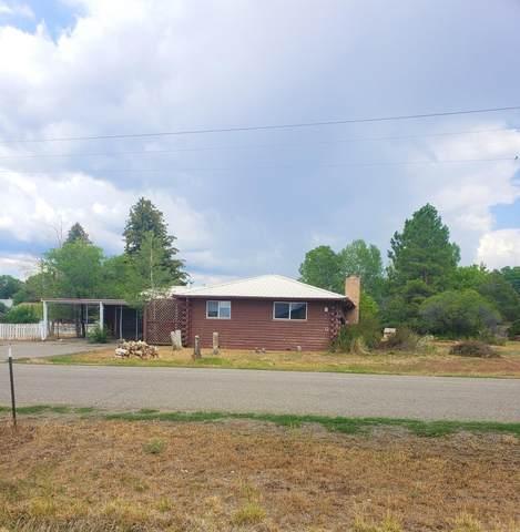 1110 Naturita Street, Norwood, CO 81423 (MLS #39784) :: Telluride Properties