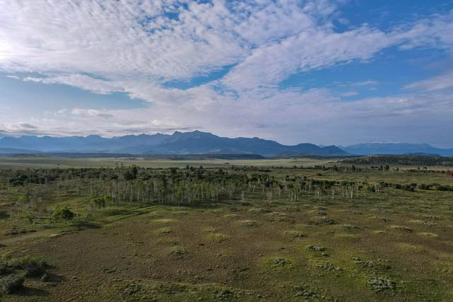 tbd Panorama Lane #1, Placerville, CO 81430 (MLS #39793) :: Telluride Real Estate Corp.
