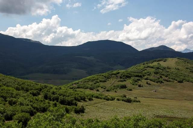 TBD Last Dollar Road, Placerville, CO 81430 (MLS #39822) :: Telluride Properties