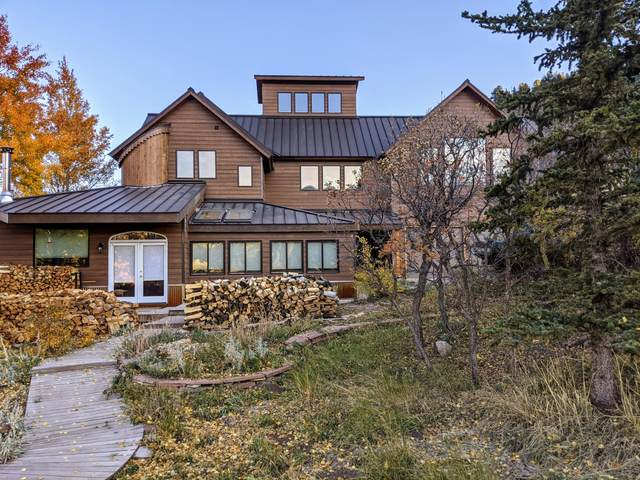 329 Ross Road, Placerville, CO 81430 (MLS #39857) :: Compass