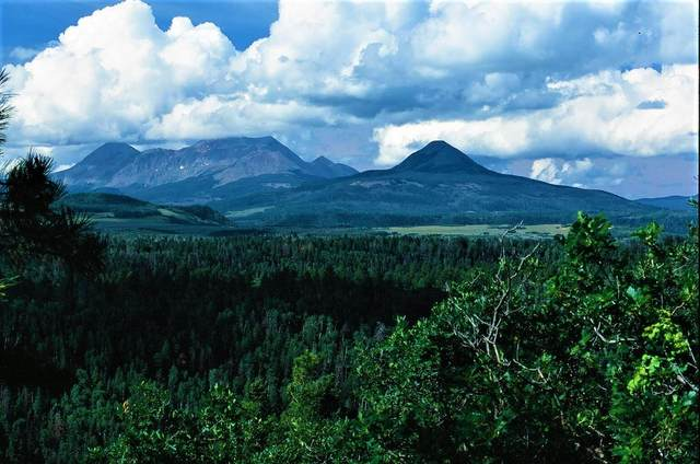 Tract 6 Sky Mountain Ranch #6, Placerville, CO 81430 (MLS #39930) :: Telluride Standard