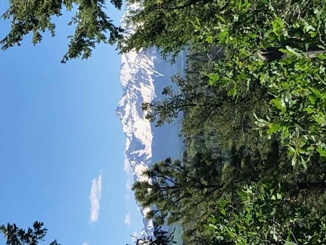 lot 7 Eagles Nest Rd. #7, Placerville, CO 81430 (MLS #39933) :: Telluride Standard