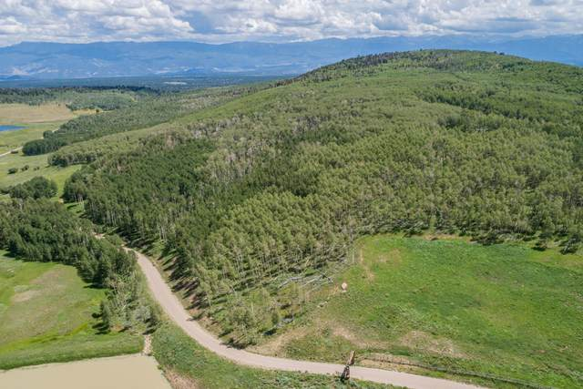 2B Spruce Mountain Lane, Ridgway, CO 81432 (MLS #39942) :: Telluride Standard