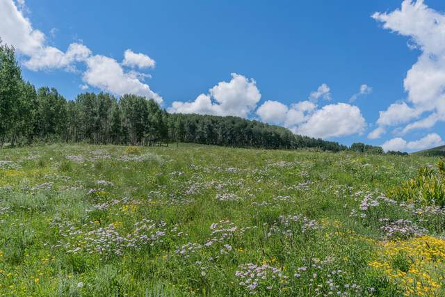 2A & 2B Spruce Mountain Lane, Ridgway, CO 81432 (MLS #39954) :: Telluride Properties