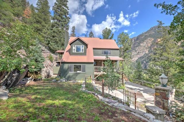 1310 Oak Street, Ouray, CO 81427 (MLS #39957) :: Telluride Properties