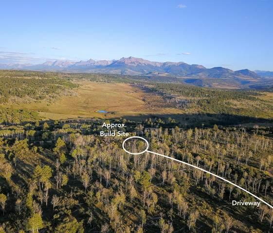 TBD Wilson Vista Way #4, Placerville, CO 81430 (MLS #39972) :: Telluride Standard