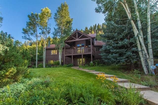 255 Juniper Village Drive, Placerville, CO 81430 (MLS #39977) :: Telluride Standard