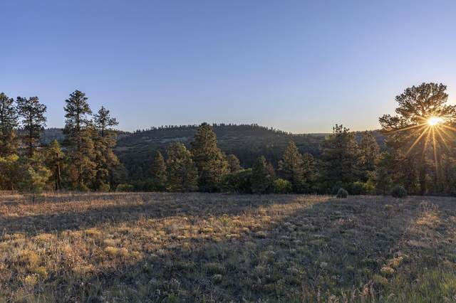 TBD Green Meadows Lane A, Placerville, CO 81430 (MLS #39980) :: Compass