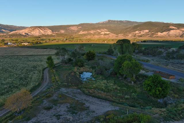 TBD County Road 1, Montrose, CO 81403 (MLS #40004) :: Telluride Real Estate Corp.