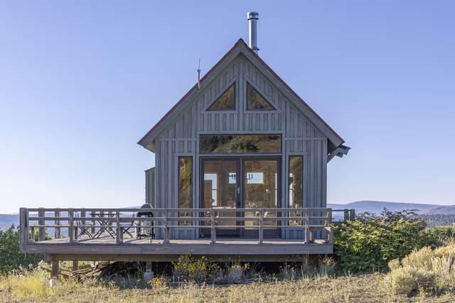 1016 San Juan Vista Road, Placerville, CO 81430 (MLS #40008) :: Telluride Properties