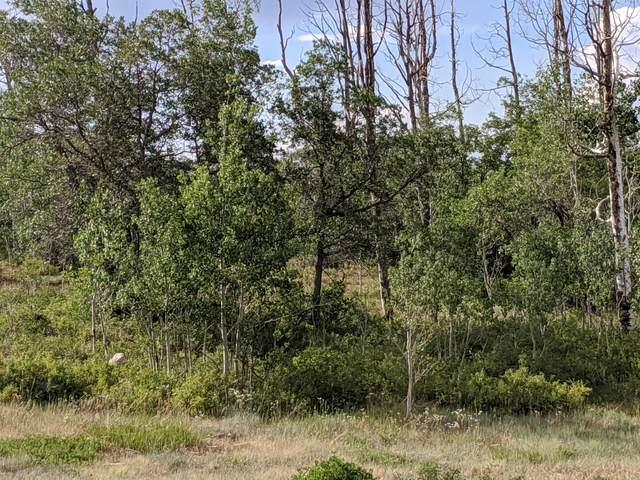 451 Birdsong Lane #13, Montrose, CO 81403 (MLS #40014) :: Telluride Real Estate Corp.