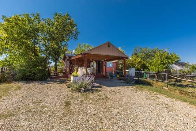 36133 3700 Road, Norwood, CO 81423 (MLS #40032) :: Telluride Properties