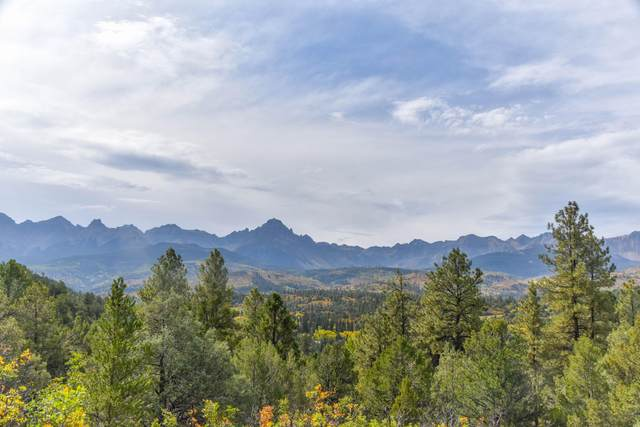 tbd County Road 7A, Ridgway, CO 81432 (MLS #40055) :: Telluride Real Estate Corp.