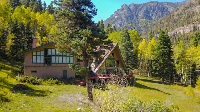 415 Camp Bird Road, Ouray, CO 81427 (MLS #40056) :: Telluride Real Estate Corp.