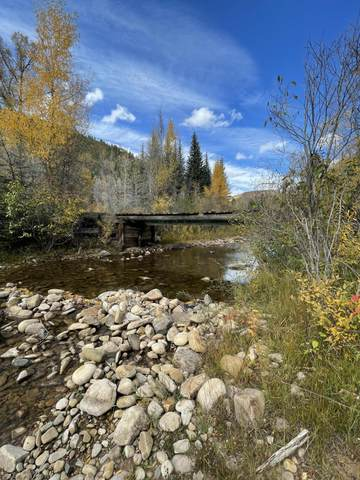 TBD Road 40, Dolores, CO 81323 (MLS #40074) :: Telluride Real Estate Corp.