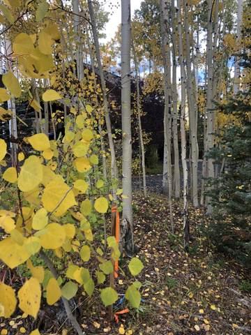 102 Gold Hill Court 237B, Mountain Village, CO 81435 (MLS #40096) :: Telluride Standard