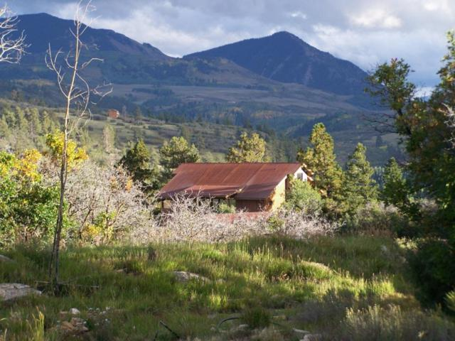 2475 Green Meadows Lane, Placerville, CO 81430 (MLS #28085) :: Telluride Properties